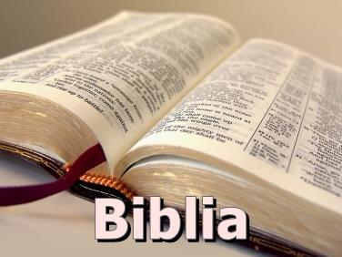 biblia376x282felir